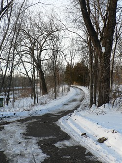 White Pathway Trail in Winter
